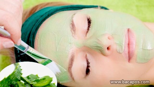 Cara Pemakaian Masker Lidah Buaya