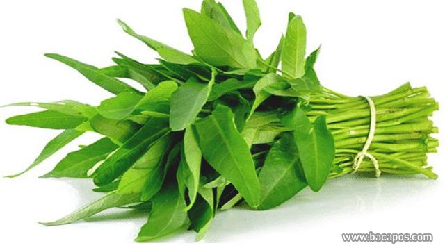 Kangkung manfaat sayuran untuk kulit