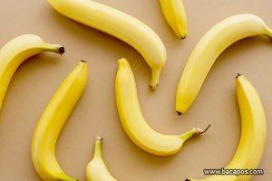 Manfaat buah pisang untuk Ibu hamil, baiknya konsumsi atau makan pisang bagi ibu hamil