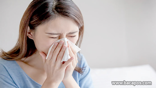Pilek (Flu)